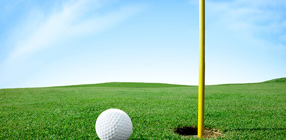Greens, Fairways, and General Turf Fertilizers. Specialty.